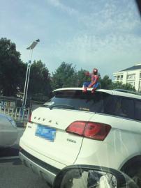 车顶蹲个蜘蛛侠看把你能的!