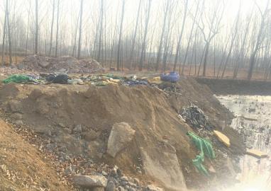 叶枯藕未采池塘渐被埋 事发地:三教堂村村北