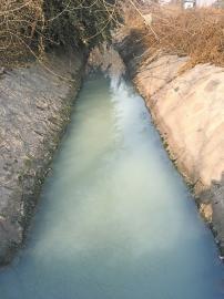北八里庄村西北角泄洪沟污水直排