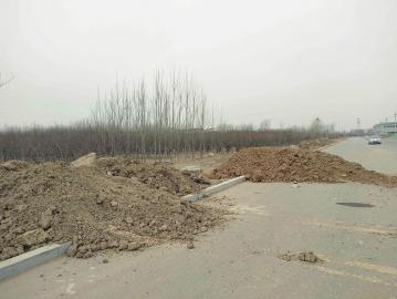 污染曝光台 这些地方渣土垃圾该管管