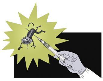 流感疫苗何以展现最有效的一面