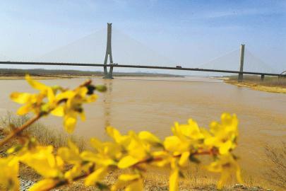 黄河济南段迎来桃花汛
