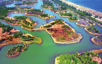 济西湿地春景如画
