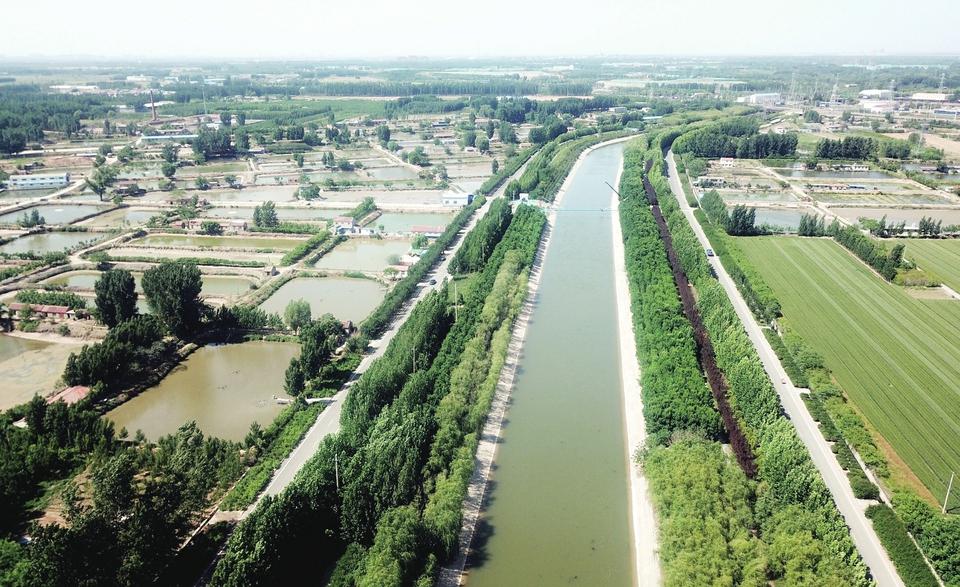 小清河源头看一看 自然湿地风光好 乡村振兴添活力