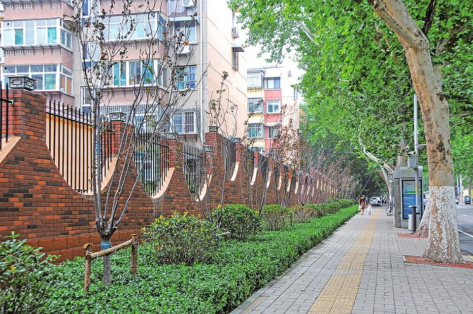 """历下区园林绿化服务中心大力推进""""拆违建绿"""",为居民打造美好居住环境"""