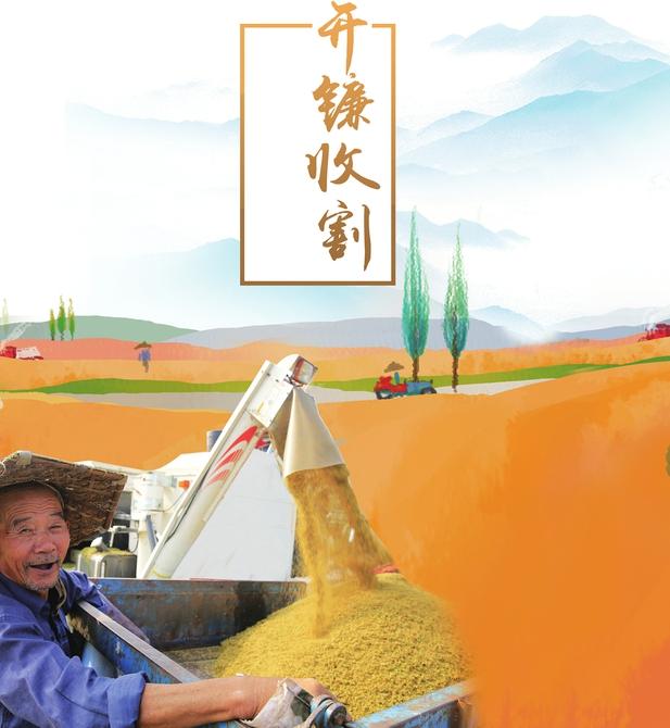 庆祝中国农民丰收节大型直播活动举行 牢记习近平总书记殷殷重托扎实推动乡村振兴