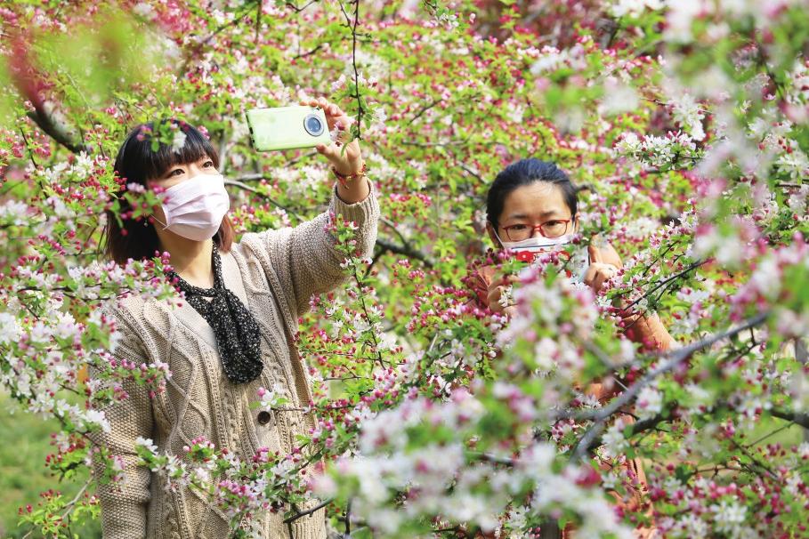 踏青赏花寻春色芳菲醉美植物园