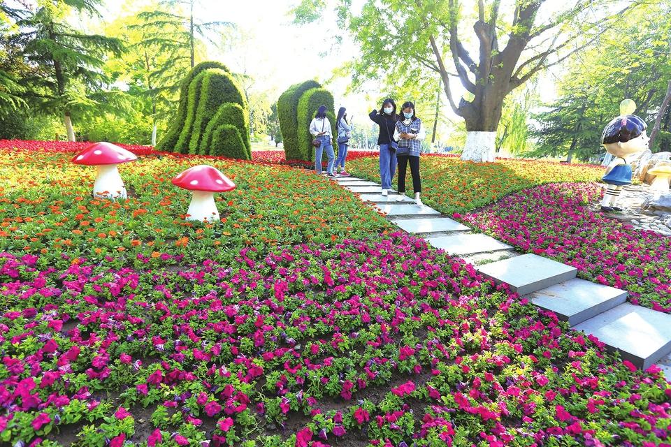 """济南植物园花团锦簇迎""""五一"""""""