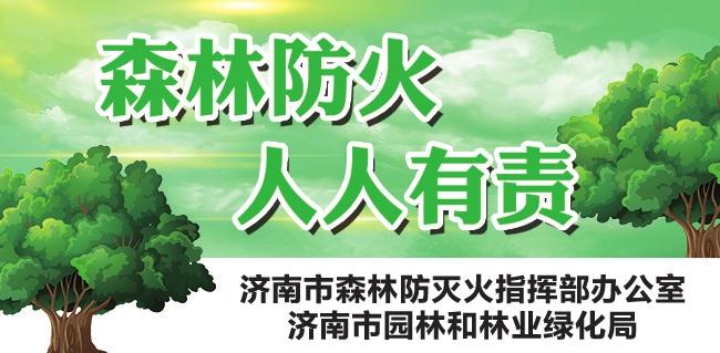 【森林防火 人人有责】济南市园林和林业绿化局开展督导检查 加快推进各项准备工作确保假日期间防火安全
