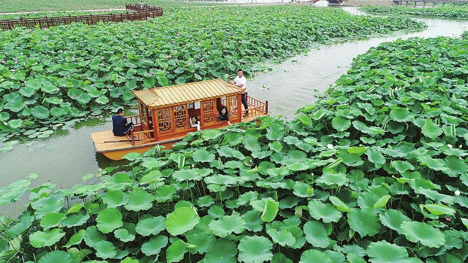 山东沿黄城市党报记者走黄河之滨州 黄河穿城过汇聚新动能