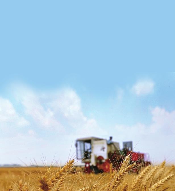 中共济南市委济南市人民政府关于全面推进乡村振兴加快农业农村现代化的实施意见 (二〇二一年二月四日)