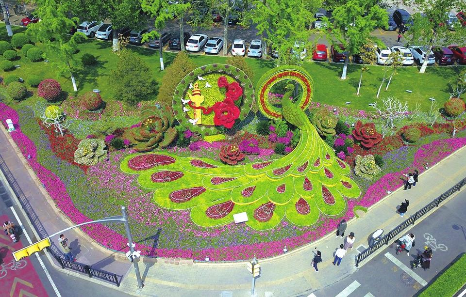 迎接亚信金融峰会 多彩立体花卉造型扮靓城市